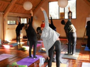 Yoga Retreat, Would you try a yoga retreat?, SA Ventures