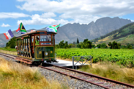 """Here comes the Wine Tram"""