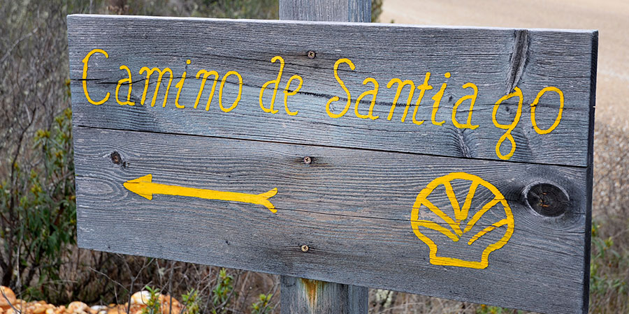 Camino, Walking the Camino, SA Ventures
